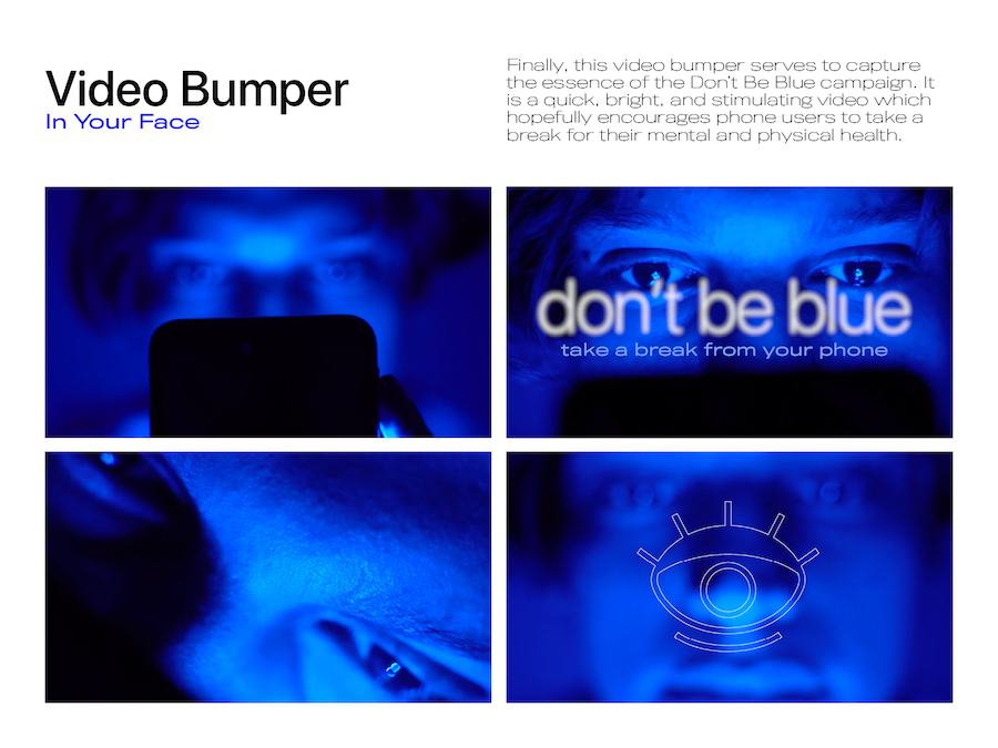DontBeBlueBook12